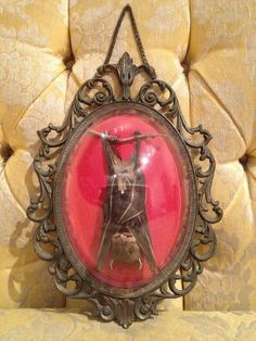 Sleeping Taxidermy Bat in Vintage Ornate Metal by BelovedNYCxx