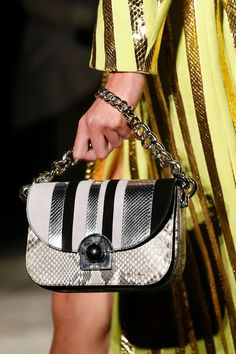 8b8e7892eb7d 12 Best Prada spring-summer 2016 bags images | Fashion bags, Purses ...
