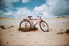 Best of Lomo #lomography#love#photography