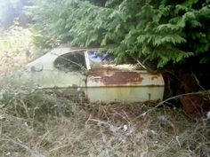 Abandoned Cars, Abandoned Vehicles, Rust In Peace, Ford Capri, S Car, Car Ford, Barn Finds, Mk1, Urban Decay