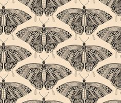 Rswallowtail_butterfly_peach_white_black_st_sf_22102016_99_shop_preview