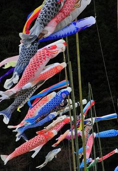 Japanese wrapping cloth FUROSHIKI Boys/' Day on May 5 Tango no sekku