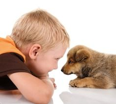 When kids learn to treat animals with gentleness and respect, they also learn about compassion and caring on a larger scale, which are traits that can later be applied to the relationships that they have with fellow humans. For parents of toddlers and young children, imparting these lessons can be a bit of a challenge; here are 10 ways to help your little one understand the importance of treating animals well.