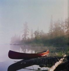 Not sure who took this, but it's really great.  Canoe in the misty morning.