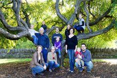 Family photo idea: Literal family tree