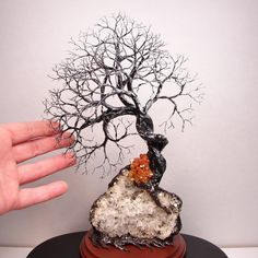 how to make a wire tree sculpture | Add it to your favorites to revisit it later.