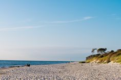 Weststrand Prerow / Darss Hotels, Traveling Europe, Side, Baltic Sea, Strand, Beach, Water, Outdoor, Law School