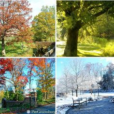 A #vibrant campus year-round!  #H2P #Campus #colorful #seasons #scenic #Pennsylvania #Pitt #College
