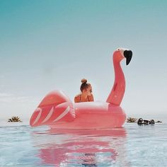 Flamingo Floaties for venue pool Beach Vibes, Summer Vibes, Summer Pictures, Beach Pictures, Pool Floats, Summer Goals, Photo Couple, Summer Photography, Summer Feeling