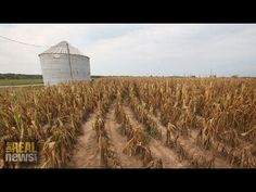 UN Report Says Climate Change Will Threaten Food Production Worldwide. #climate
