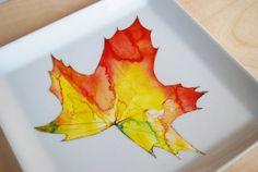 plate fall leaf