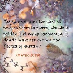 Beatriz Mata - About - Google+