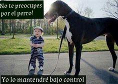 El poder de la obediencia canina :P