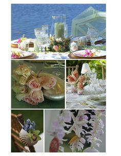 hemingway-beach-sea-shell-designs