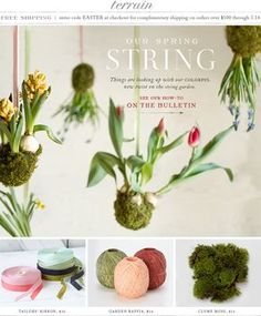 03.04.13 Things are looking up with our colorful new twist on the string garden at Terrain.