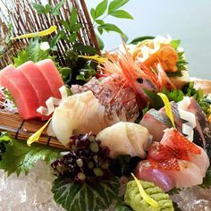 [ KITAOHJI QUALITY ]  Assorted 7 kinds of Sashimi #お造り7点盛り  旬魚を中心に本日おすすめのお造りを盛り合わせでご用意いたします  Chef selects seasonal fresh fish and sea foods of the day as his recommendation.  #kaiseki #cuisine #kitaohji #sashimi #maguro #honmaguro #redbream #seabream #uni #seaurchin #hirame #flatfish #刺身 #本鮪 #japanesefood #instafood #foodpic #yum #yummy #thonglor #sukhumvit #bangkok #อาหารญ #dinner #lunch #authenticjapanesecuisine by takashi.kitahara