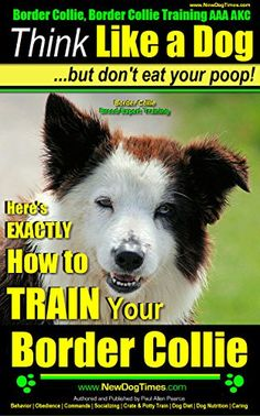 Border Collie, Border Collie Training AAA AKC: Think Like... https://www.amazon.com/dp/B00IJZ33VQ/ref=cm_sw_r_pi_dp_jMlIxb8F2DKBN