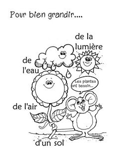 Kids Worksheet; Simple French Words On What Plants Need to Grow.... Sun, Water, Oxygen. Did You Say the Words Right? Then Color the Matching Word/ Picture. Well Done!...a petit bisou, to you ;- D