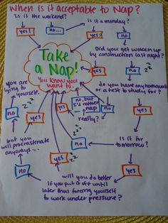 "part of a ""college flowchart"" bulletin board"