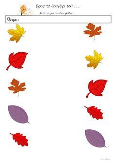 Φύλλα εργασίας για το φθινόπωρο (της Ειρήνης Βαλμά) English Worksheets For Kindergarten, Kids, School, Young Children, Boys, Children, Boy Babies, Child, Kids Part