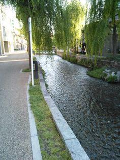 京都の街の中を流れる小川です!!