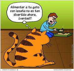 Frases, chistes, anécdotas, reflexiones y mucho más.: Chistes con animalitos. Garfield y la lasaña.