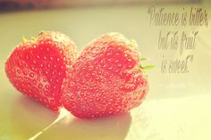 """""""Patience is bitter,but its fruit is sweet."""" ― Aristotle."""