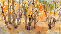 温泽WARMMARSH的照片 - 微相册 Plants Watercolor, Painting, Art, Art Background, Painting Art, Paintings, Kunst, Drawings, Art Education