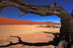 The beautiful Sossussvlei  sand dunes are often referred to as the highest dunes in the world. Located in the Namib Naukluft park, the largest conservation area in Africa, and fourth largest in the world - the sand dunes at Sossusvlei  is a must see visitors attraction when visiting Namibia.  Please contact your VHI reservations team for options