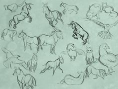 Animal Gestures by Clairictures.deviantart.com on @deviantART