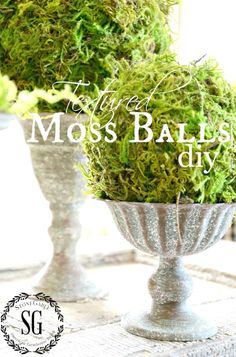 Make these easy diy moss balls to add to your decor. Just 3 things needed to make a moss ball. Diy Garden Projects, Diy Projects To Try, Moss Decor, Greenery Decor, Do It Yourself Inspiration, Spring Birds, Do It Yourself Home, White Decor, Inspired Homes