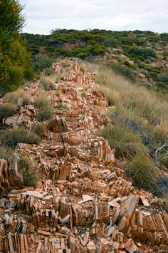 Would you do the Larapinta Trail, NT, Aus? Looks like a testing surface