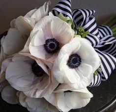 Splendor in the South bouquet with white flowers black centers black and white striped ribbon