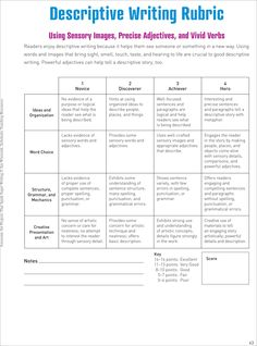 What's the best way to organize paragraphs in an essay?