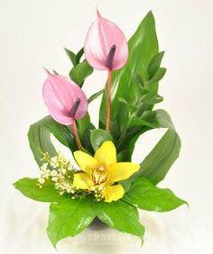 Aranjamente Florale Nunta: Anthurium, Chamelaucium, Orhidee (Cymbidium), Ruscus Olanda, Salal (Gaultheria shallon)