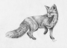 The cunning and clever fox.