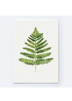 Fern Watercolor Print Home Decoration. Bedroom Art Green Wall Decor. Botanical Painting. Spring Nature Woodland Illustration Kitchen Poster Gift Idea for Women.  Type of paper: Prints up to (42x29,7cm) 11x16 inch size are printed on Archival Acid Free 270g/m2 White Watercolor Fine Art Paper and retains the look of original painting. Larger prints are printed on 200g/m2 White Semi-Glossy Poster Paper.  Colors: Archival high-quality 10-cartridge Canon Lucia Pigment Inks with a droplet...