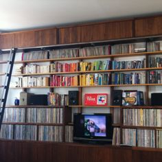 two tone shelves for records and books... with ladder!