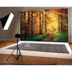 Camera & Photo Sporting Laeacco Fairy Tale Old Tree Flowers Magical Light Baby Photography Background Customized Photographic Backdrops For Photo Studio To Win Warm Praise From Customers Consumer Electronics