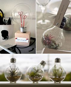 lightbulbs as wedding favors