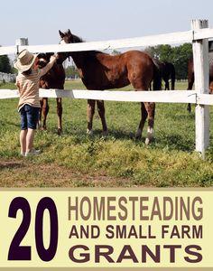 20+ Grants for Homesteaders and Beginner Farmers http://homesteadandprepper.com/20-grants-for-homesteaders-and-beginner-farmers/