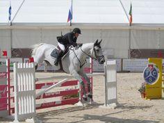 Jumping www.villars.ch Events, Horses, Animals, Happenings, Animales, Animaux, Animal, Horse, Animais