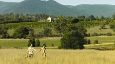 Attractions, Yarra Valley & Dandenong Ranges, Victoria, Australia
