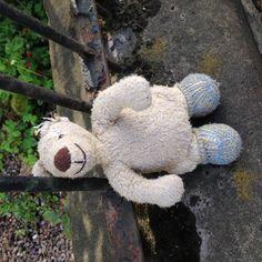 Found on 27 Jul. 2016 @ Ferry Road, Edinburgh . Found on Ferry Road near Trafalgar Street. We're keeping it safe at home. Visit: https://whiteboomerang.com/lostteddy/msg/yzw6pw (Posted by Camilla on 27 Jul. 2016)