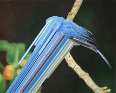 Bird rib, 2010 40x50 cm, oil on canvas  VERTEX SKINNING ERROR GAME.