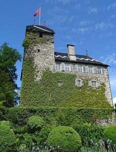 Altes Schloss Buonas, Zug