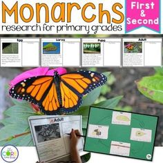 Life Cycle of a Monarch Butterfly: Integrated ELA and Science Research Pack
