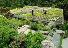 A cabin and shed built into a hill features a perennial garden flanked by a natural stone staircase. Source: Eco Furniture Blog