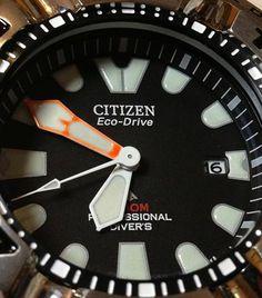 Citizen Ecozilla BOOM!