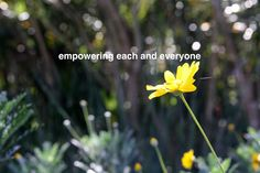 Empowering each and everyone: by YES Psychology & Consulting. photo taken by Kash Thomson. www.yespsychology.com.au